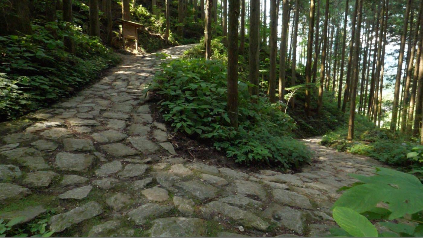 古道ハイキング & 宿場町ツアー
